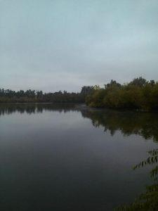 Lake day!